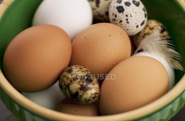 Bowl of Chicken Eggs — Stock Photo