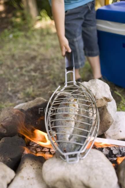 Tagsüber Blick auf junge Fische über Lagerfeuer Grillen — Stockfoto