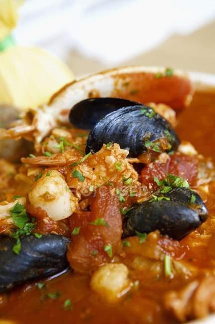Ragoût de poisson avec des moules — Photo de stock
