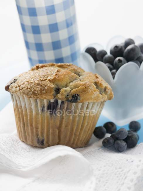 Blueberry muffin and fresh blueberries — Stock Photo