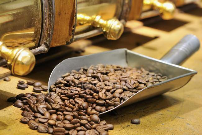 Coffee beans in metal scoop — Stock Photo