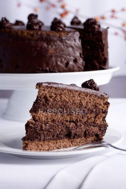 Шоколадный торт с остальной части торт — стоковое фото
