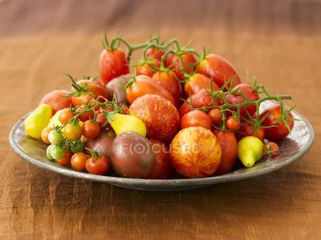 Freshly Washed Heirloom Tomatoes — Stock Photo