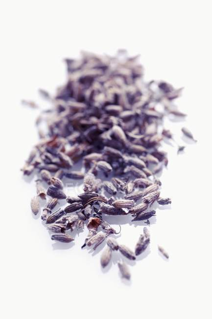 Closeup view of dried lavender flowers heap — Stock Photo