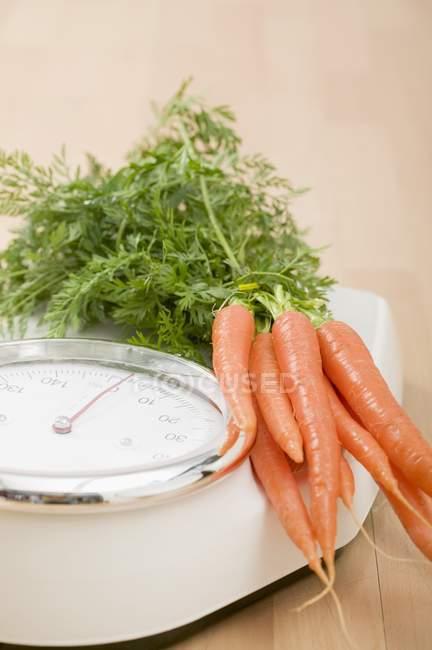 Fresh ripe carrots on scales — Stock Photo