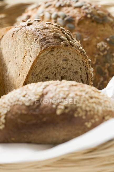 Different loaves of bread — Stock Photo