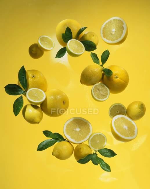 Свіжих лимонів стиглі з листям — стокове фото