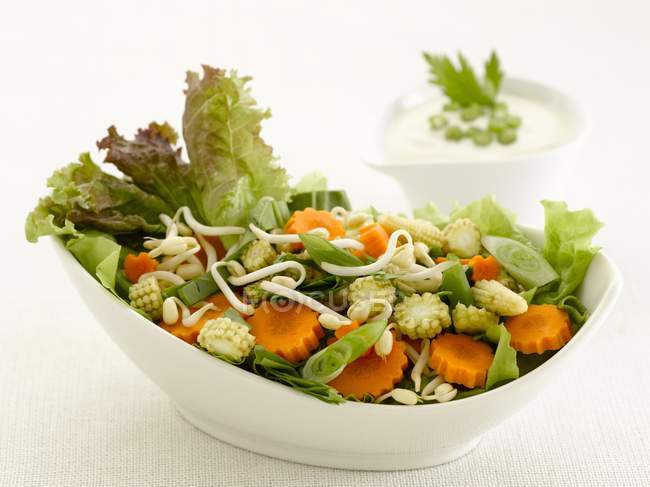 Mixed salad with carrots — Stock Photo