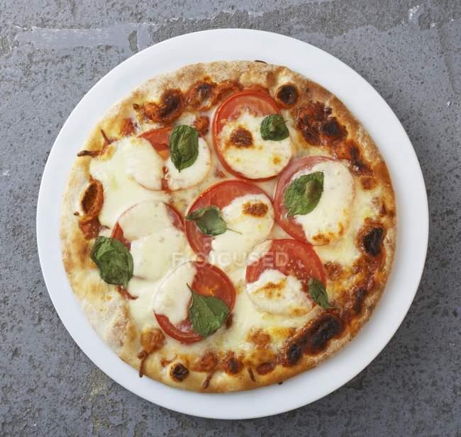 Pizza tomate et mozzarella — Photo de stock