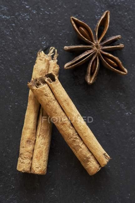 Паличка кориці і зірки анісу — стокове фото