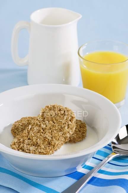 Galletas de trigo con leche - foto de stock