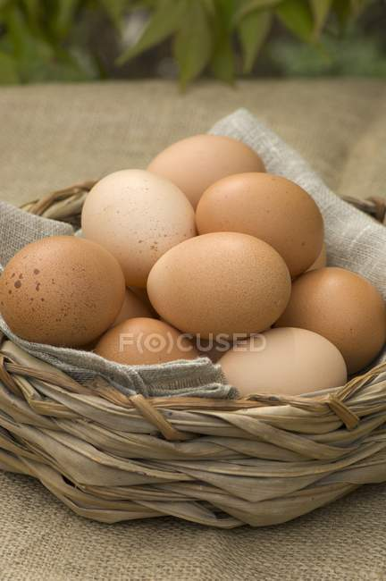 Braune Eier im Korb — Stockfoto