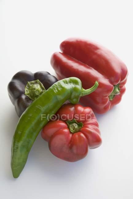 Красный, фиолетовый и красный стручковый перец — стоковое фото