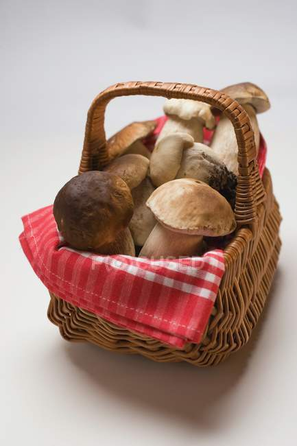 Fresh ceps in a basket — Stock Photo