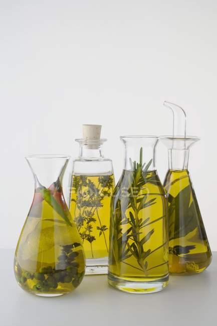 Четыре различных трав масла в бутылки на белом фоне — стоковое фото