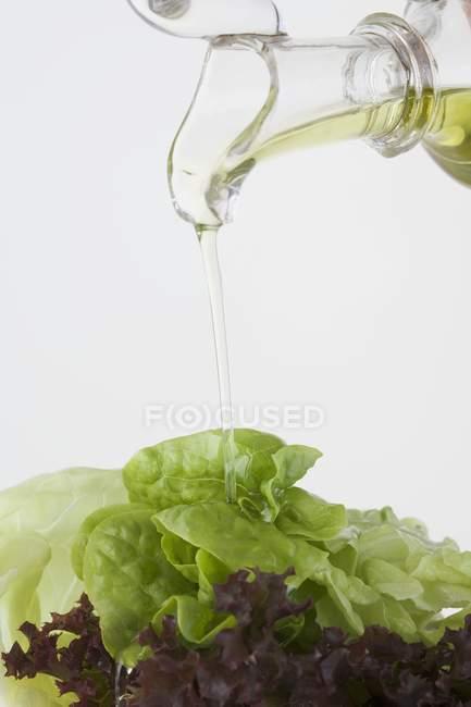 Verter aceite de ensalada de hojas - foto de stock