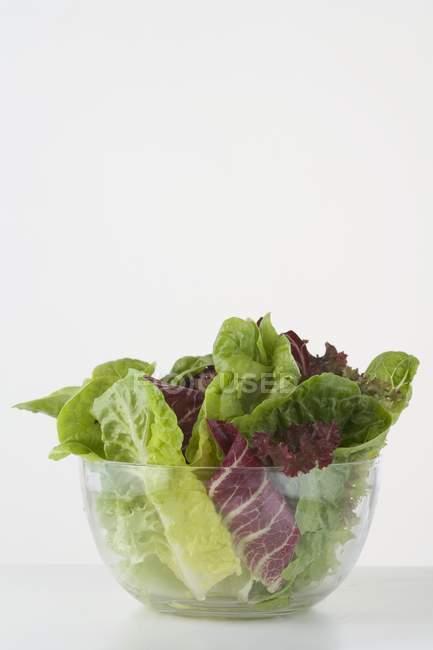 Hojas de ensalada en Bol - foto de stock
