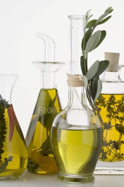Vista de cerca de varios aceites con hierbas y especias - foto de stock