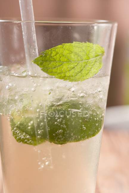 Mint leaves in Mojito — Stock Photo