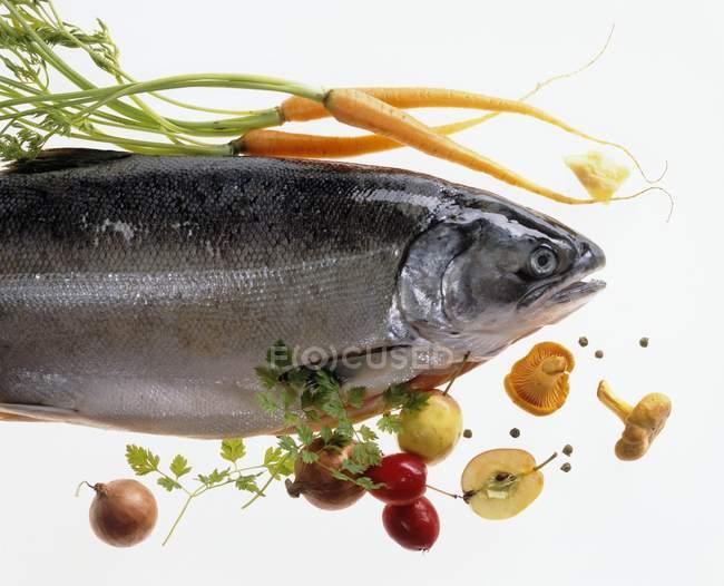 Rohe Lachsforelle mit Gemüse — Stockfoto