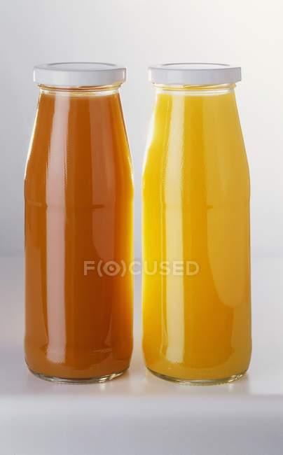 Zwei Flaschen Fruchtsaft — Stockfoto