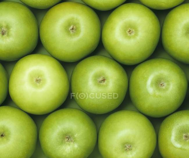 Green ripe apples — Stock Photo