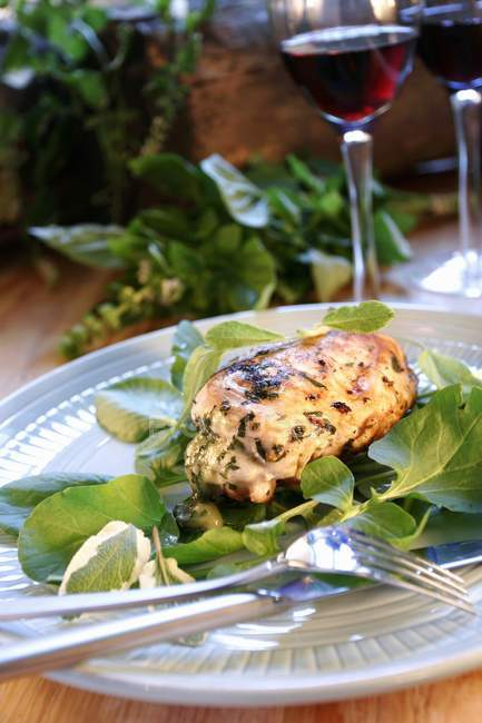 Roasted Chicken breast on herb salad — Stock Photo