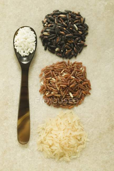 Four different types of rice — Stock Photo