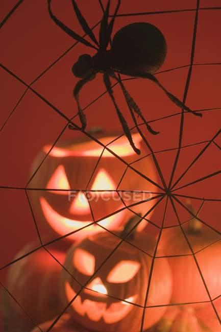 Lanternes de citrouille et spider web — Photo de stock