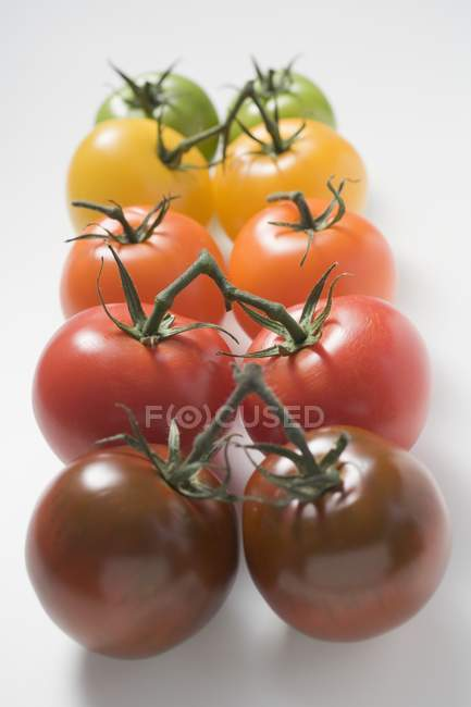 Cherry tomatoes various colours — Stock Photo