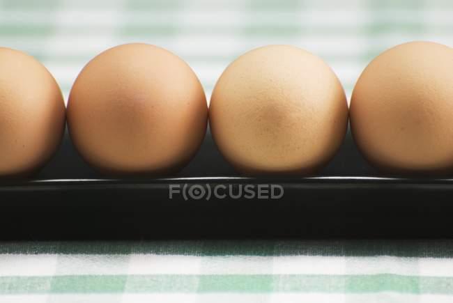 Rangée d'œufs bruns — Photo de stock