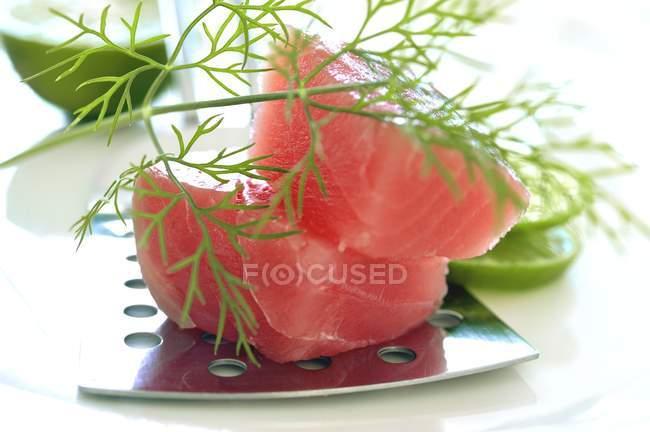 Filete de atún fresco - foto de stock