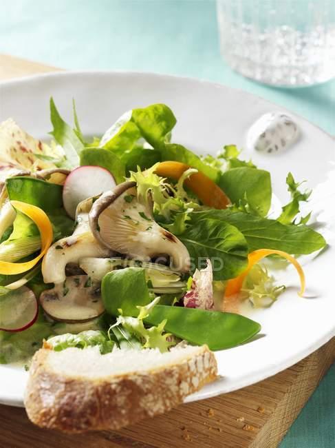 Foglie di insalata con ravanelli — Foto stock
