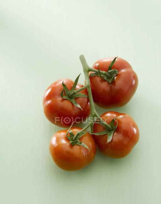 Four red tomatoes — Stock Photo