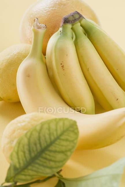 Bananes et agrumes — Photo de stock