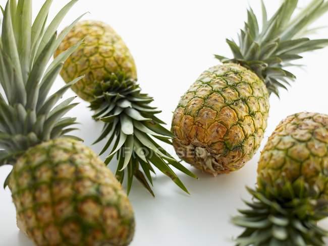 Ananas maturo quattro — Foto stock