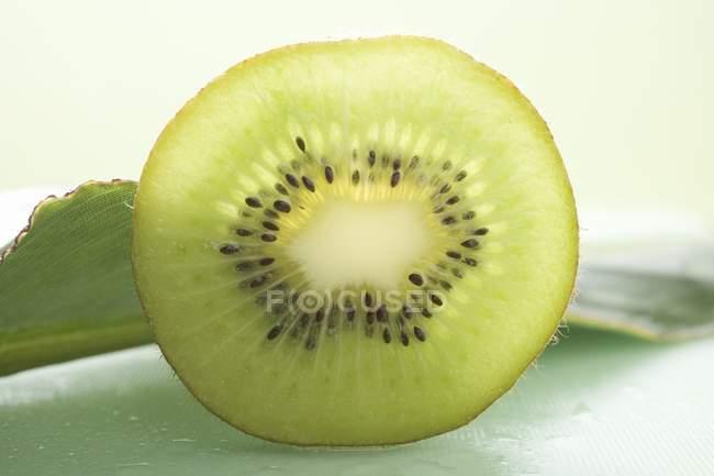 Scheibe Kiwi, Nahaufnahme — Stockfoto