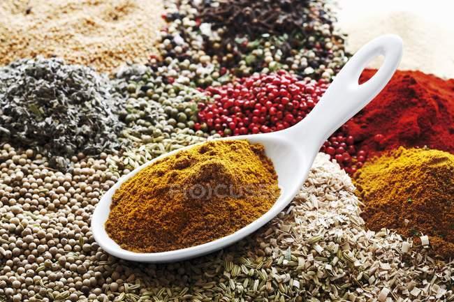 Polvo de curry en cuchara de porcelana - foto de stock