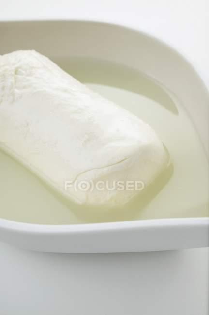 Буффало моцарелла с рассола — стоковое фото