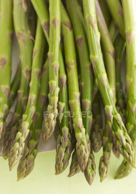 Fresh green ripe asparagus — Stock Photo