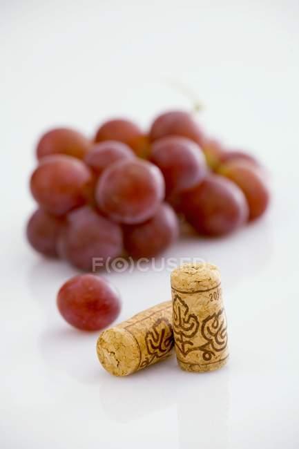 Weinkorken mit roten Trauben — Stockfoto