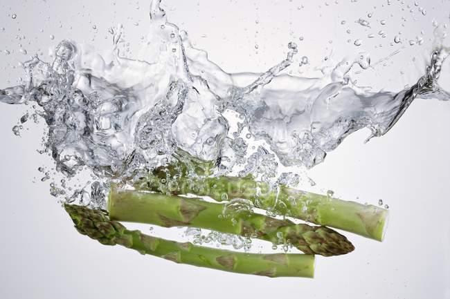 Rami di asparagi in acqua limpida — Foto stock