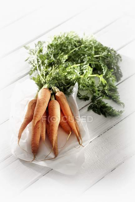 Manojo de zanahorias frescas con tallos - foto de stock