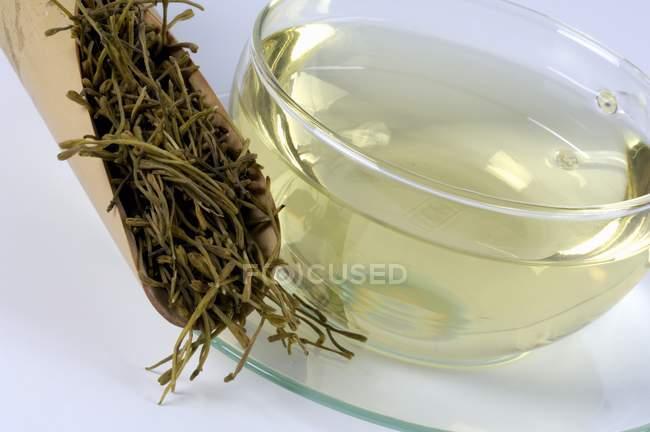 Té y hoja de madreselva - foto de stock