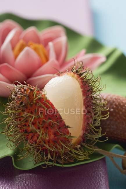 Rambutan e lírio d'água — Fotografia de Stock