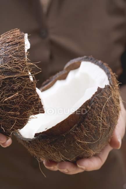 Руки, удерживая кокос — стоковое фото