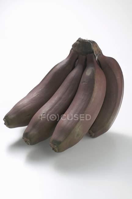 Букет из красных спелых бананов — стоковое фото