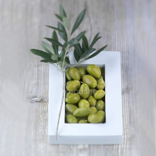 Зеленые оливки в белый шар — стоковое фото