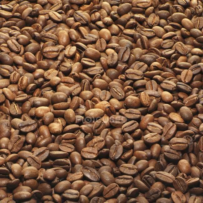 Вся смажених кавових зерен — стокове фото