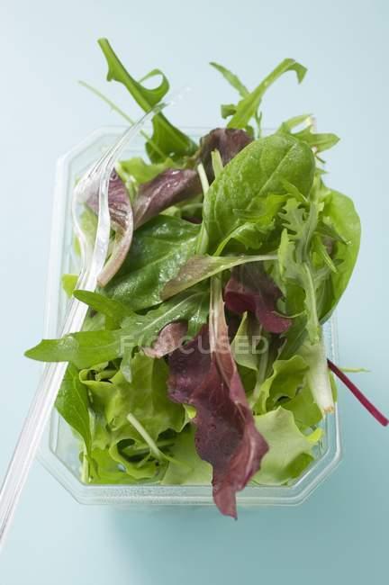 Hojas de ensalada mixta - foto de stock